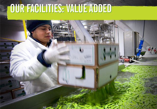 facilities-value-added