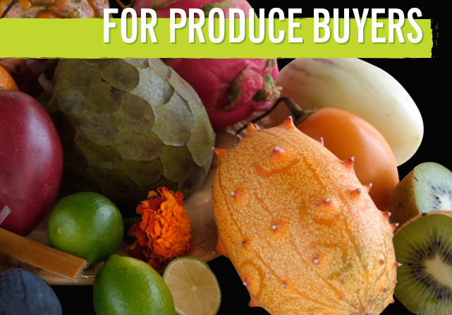 produce-buyers-header