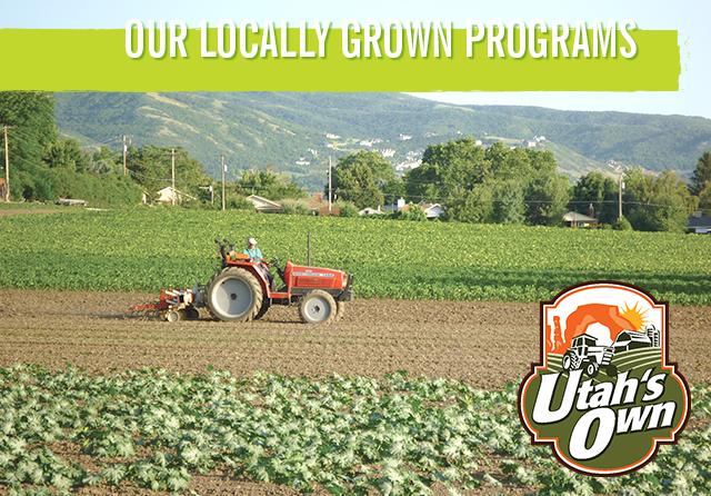 locally grown programs