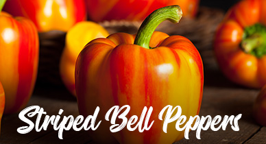 striped-bell-peppers