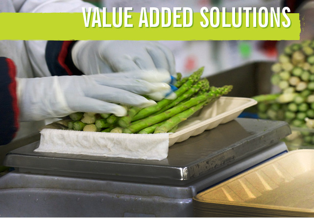 value-added-solutions-main